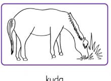 Gambar Mewarnai Binatang Rumah Bunda Worksheet Kuda Gambar Sapi