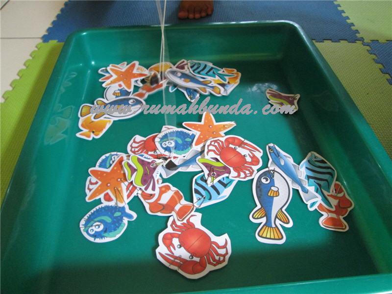 ikan-magnet2